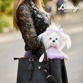 Снимка на Lucky Mimi: Люляк