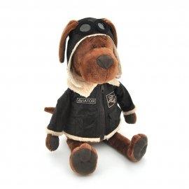 Снимка на Куки- Кучето летец 25